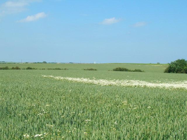 Farmland near  Mile House