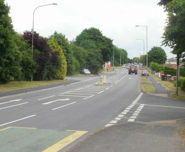 Tree-lined section of Chepstow Road, Newport