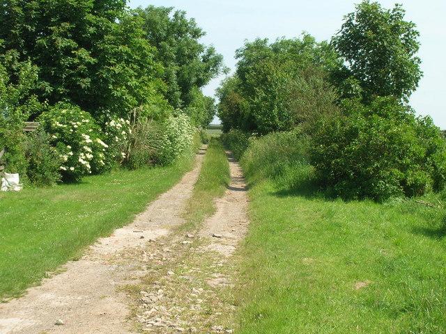 Farm track near Hollym