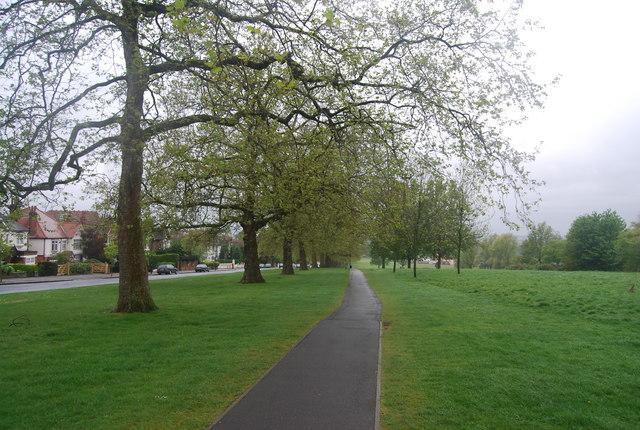 Capital Ring, Streatham Common