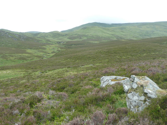 Rock outcrop in grass and heather