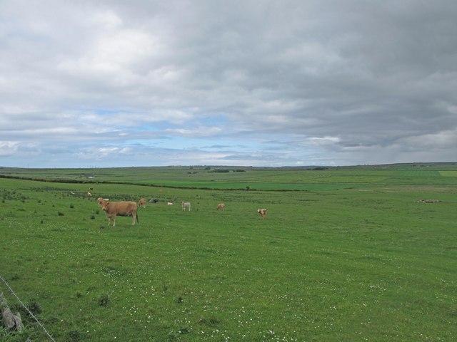 Farmland near Skinnet