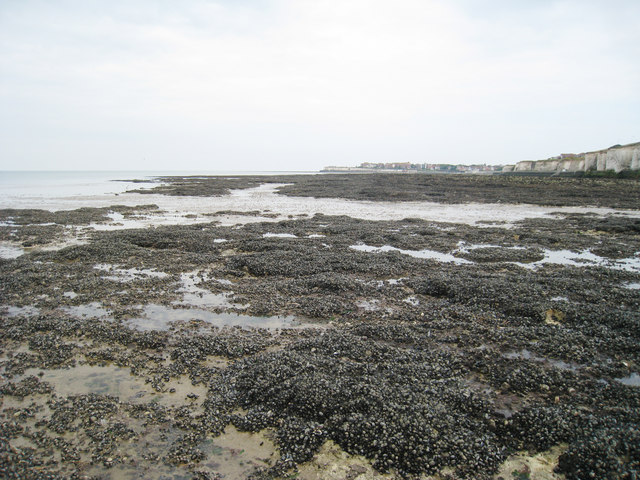 Rock Pools at Epple Bay