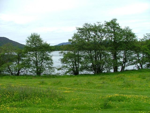 Field overlooking Loch Alvie