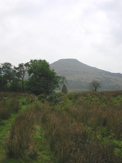 Bleathwaite Pasture