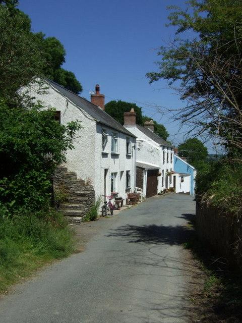 Down the street at Llwyncelyn