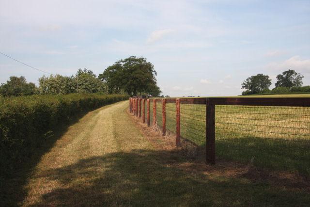 Paddock fencing along the Moulton Road