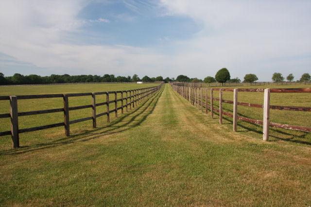 Mown strip between paddocks