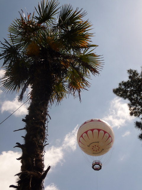 Bournemouth: a palm and a balloon
