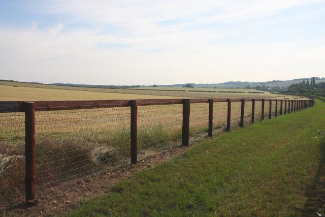 Paddock fencing near Moulton