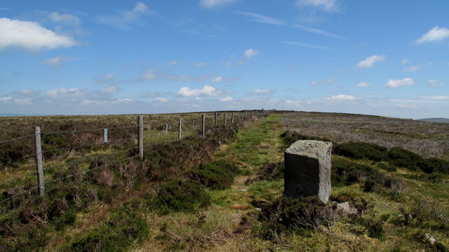View to the Summit Area of Burn Moor
