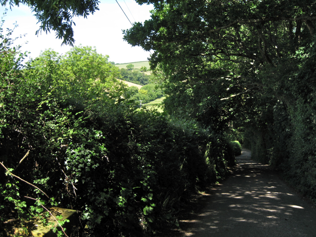 Lane down to Higher Lake Farm