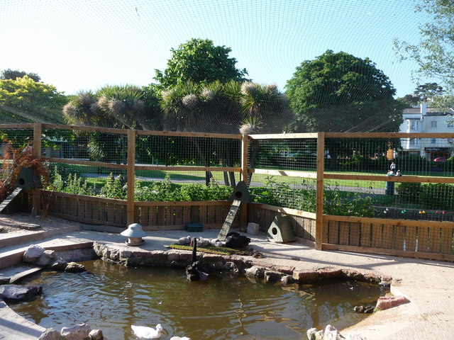 Dawlish : Waterfowl Enclosure