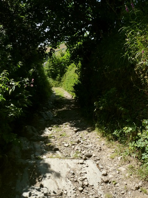 A track which leads to North Lobb