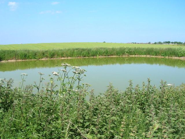 Pond near North Carr Dales Farm