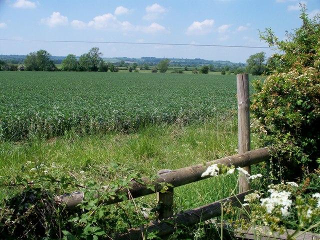 Oxfordshire and Gloucestershire farmland
