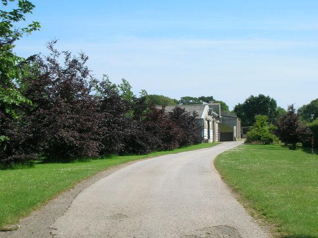 Track to North Farm, Holmpton