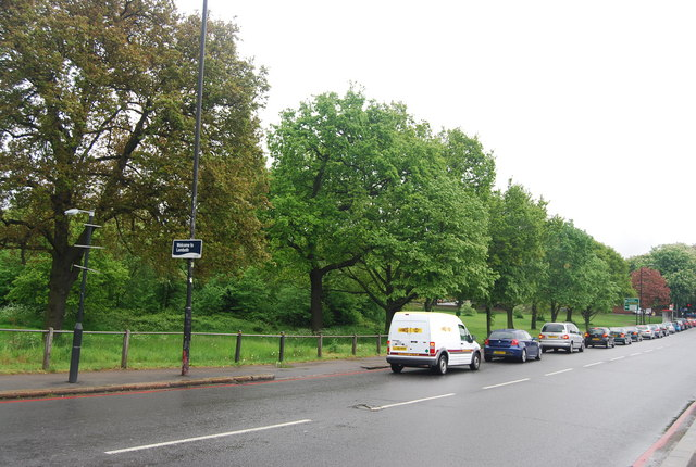Trees on the edge of Tooting Bec Common