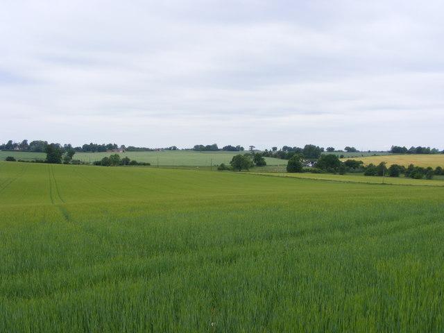 Buck's Hill