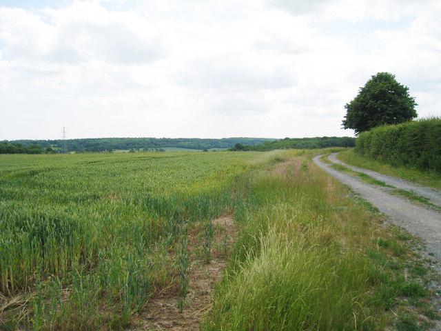Farm Track near Howletts Farm