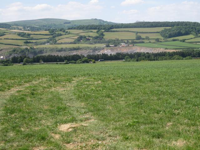 Grassland west of Creek Farm