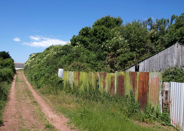 Corrugated iron by the path