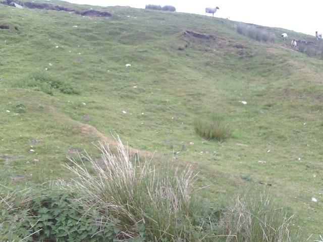 Whitehaw Head