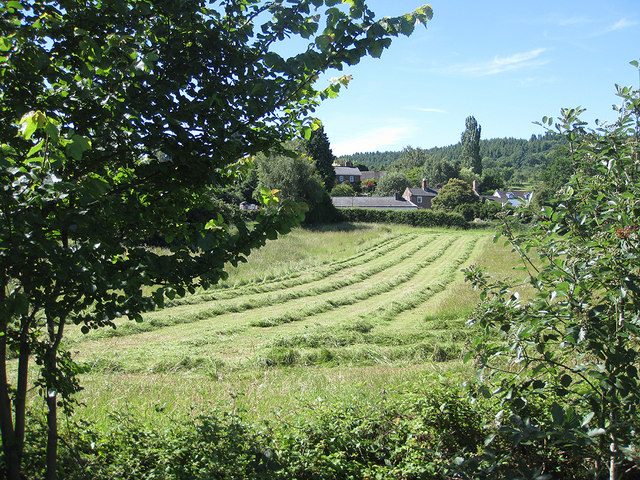 Haymaking, Weston Under Penyard