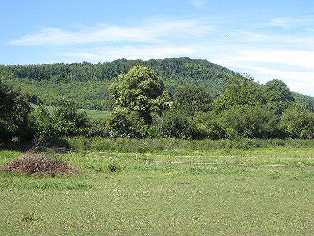 View to The Penyard