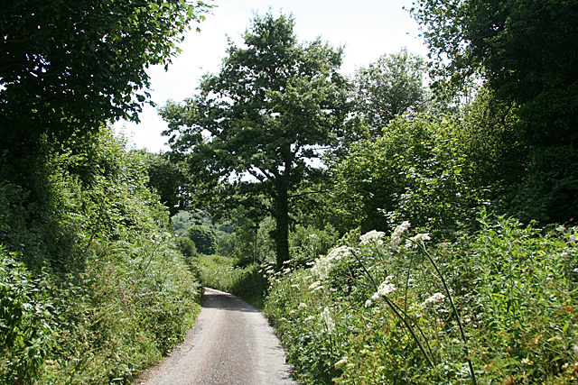 Stokenham: lane to Lannacombe beach