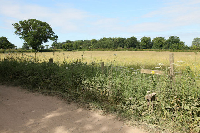 Footpath across field
