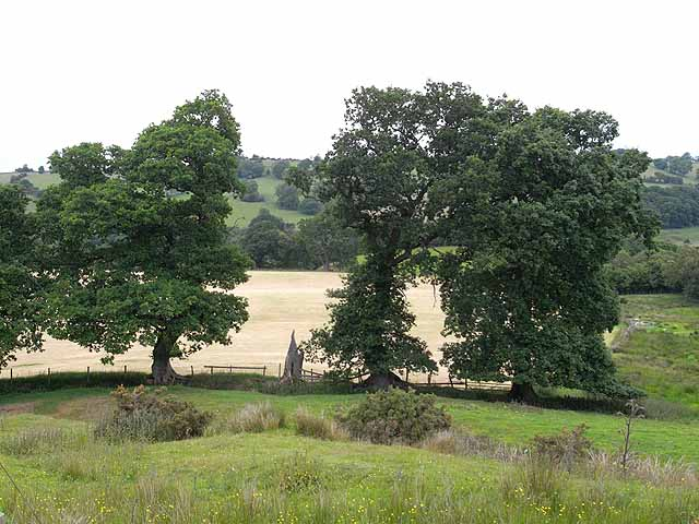 Fields near Low Birkhirst