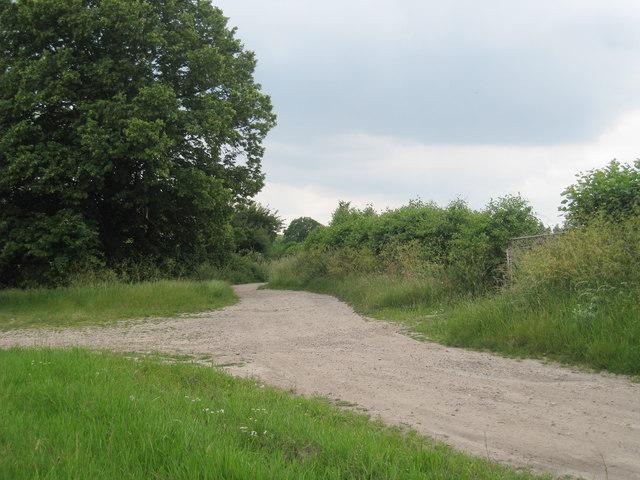 Track to Brick Kiln Cottage