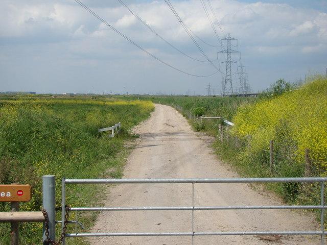 Dagenham Ford's wind turbines, viewed from Rainham Marshes Nature Reserve