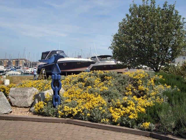 Flowers near Sovereign Harbour