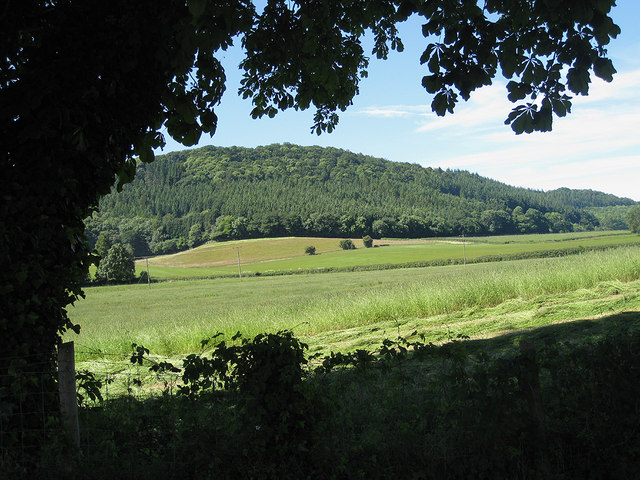 The wooded Penyard