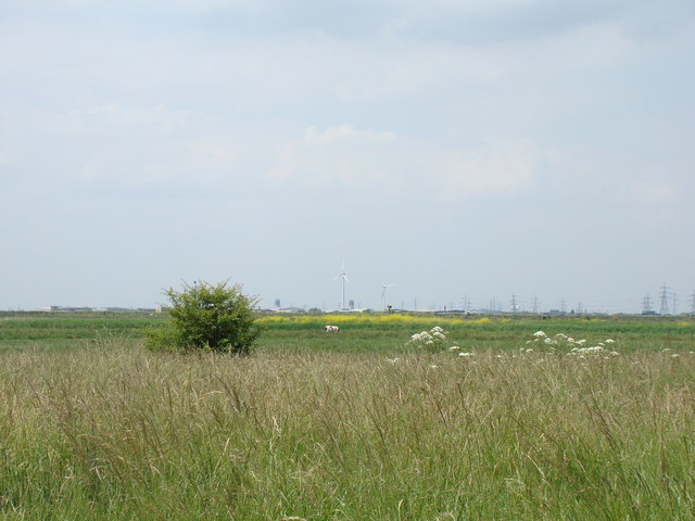 Dagenham Ford's wind turbines, viewed from Rainham Marshes Nature Reserve #2