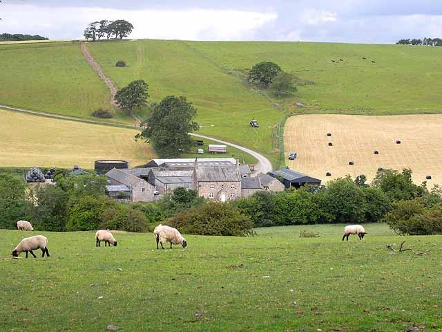 Lanerton Farm