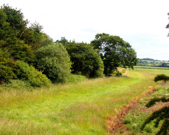 Arable land by a small wood near Water Eaton