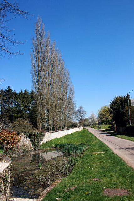 Roadside Water Garden, Cottisford