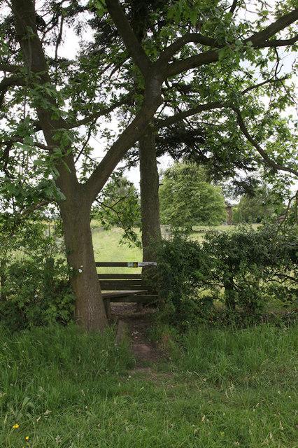 Stile under oak tree