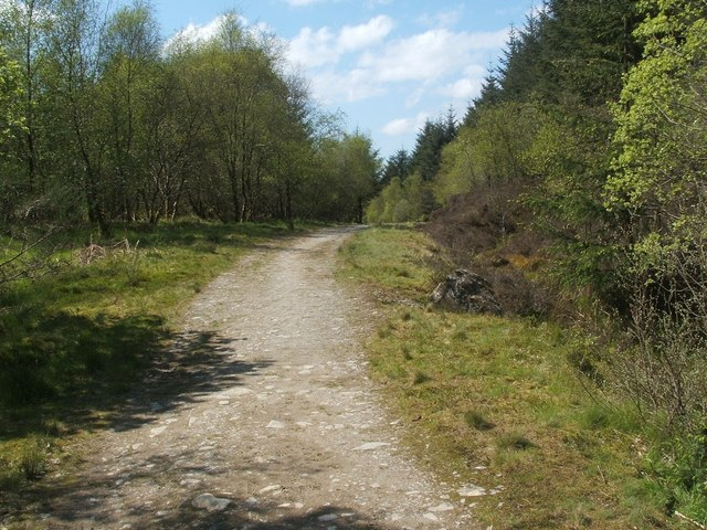 Track through Highlandman's Wood