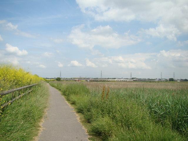CTRL viaduct viewed from the Rainham Marshes Nature Reserve