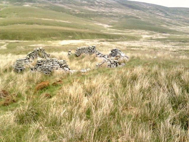 Ruined sheepfold, Cartmire Gill