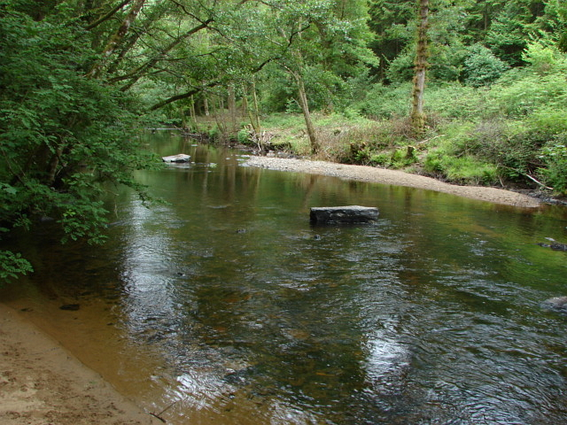 River Teign, Dunsford Wood
