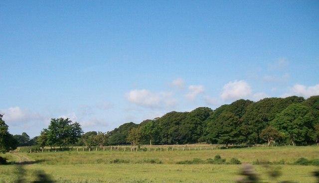 Farmland and woodland at Bodegroes