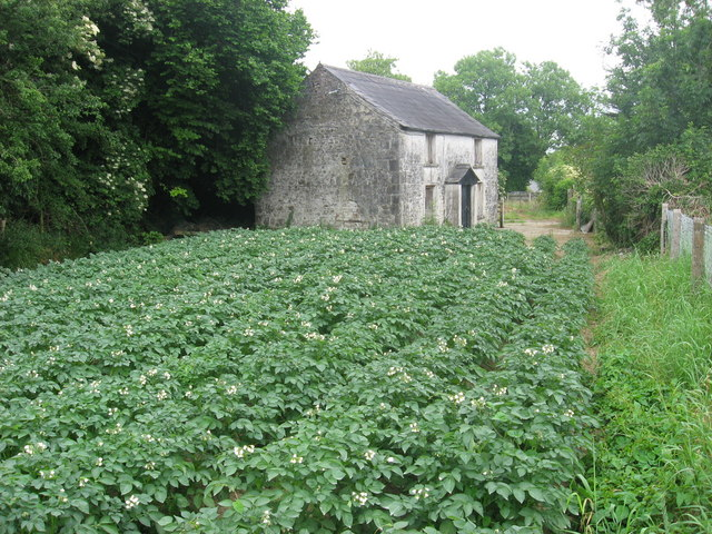 Old house at Meadstown, Co. Meath