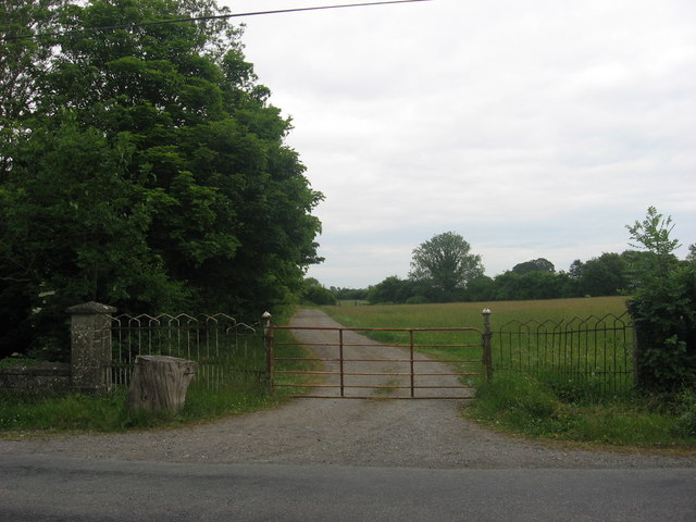 Gate at Tullaghanstown, Co. Meath