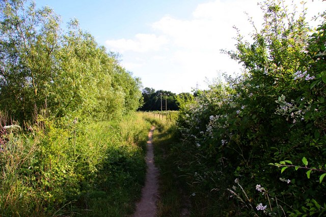The Thames Path south of Sandford Lock