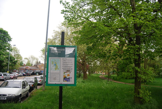Wandsworth Common information board